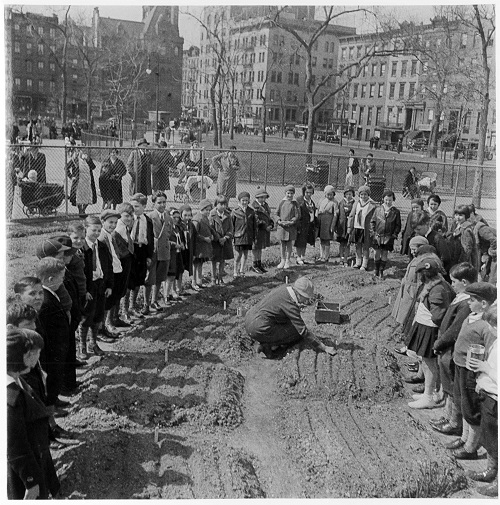 A children's garden opened in Tompkins Square Park in 1934. Photo courtesy of the New York City Parks Photo Archive.