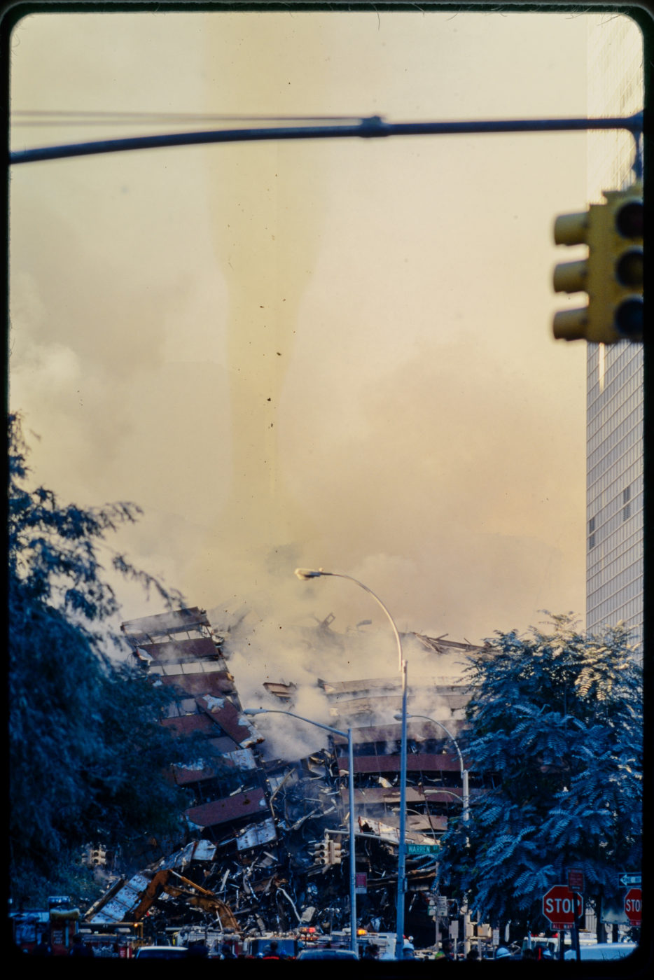 Smoke Pouring Over the Destroyed WTC5 with Sut on the surrounding Trees.jpg