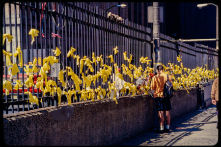 Unknown Individual Stands Near a Fence of Yellow Ribbons, a Symbol of National Support, After Attacks.jpg