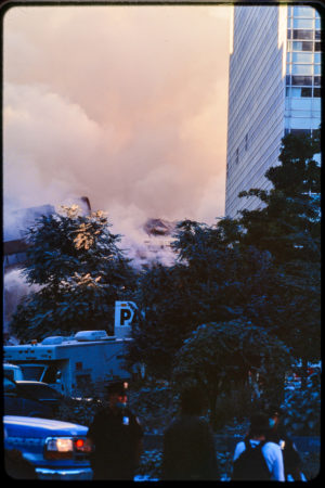 View of the Falling WTC5 Through Trees Covered in Dust and Sut