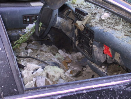 Dust and Fallout from the WTC inside a Car Parked Nearby.JPG